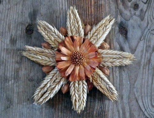 Sacred Foods: Grain Magic