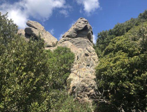 Sardinia, Land of Many Faces