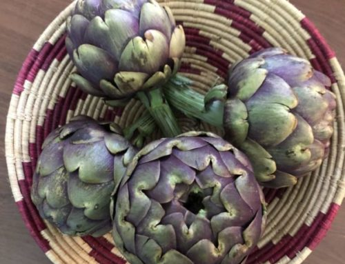 Artichoke Magic: Spring in Sardinia